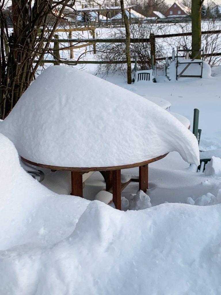 Schnee-3